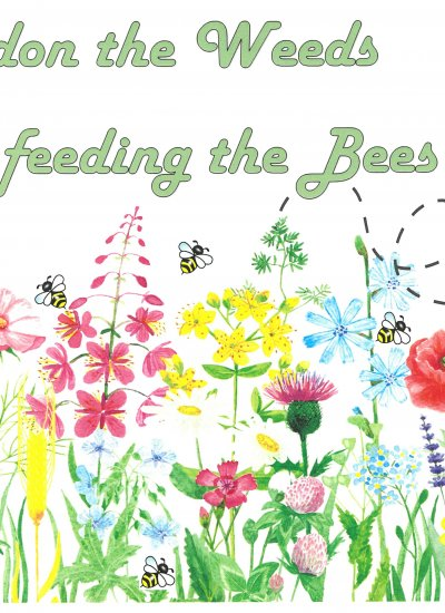 Pardon The Weeds, We're Feeding The Bees